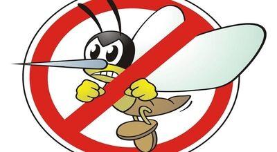 Lotta alle zanzare, distribuzione gratuita del prodotto antilarvale ai residenti del Comune di Spresiano