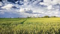 Serata Informativa per gli Agricoltori sul Progetto di Agricoltura Sostenibile